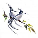 Aquarelle 2 oiseaux